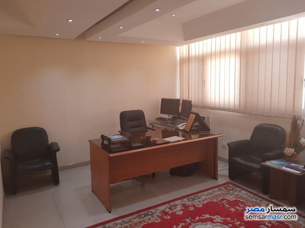 Photo 11 - Apartment 6 bedrooms 3 baths 365 sqm extra super lux For Rent Maadi Cairo