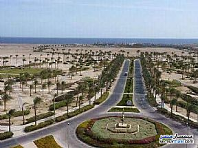 Ad Photo: Land 2000 sqm in Red Sea