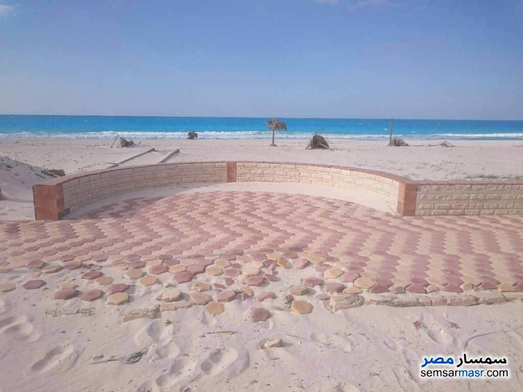 Photo 3 - Apartment 3 bedrooms 1 bath 300 sqm extra super lux For Sale Nakheel Alexandira