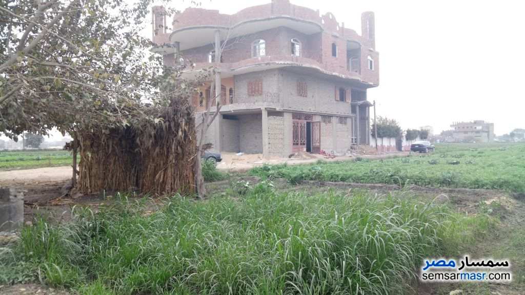 Photo 1 - Land 100 sqm For Sale Nahia Giza