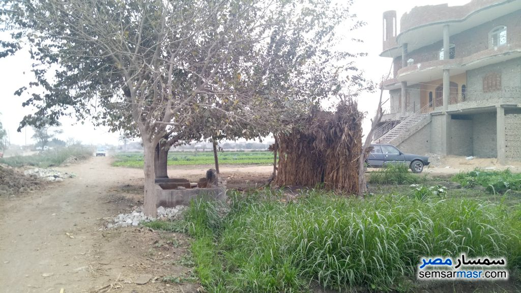 Photo 3 - Land 100 sqm For Sale Nahia Giza