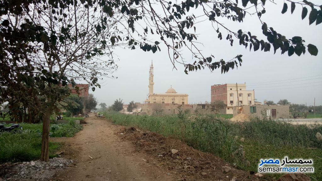 Photo 2 - Land 100 sqm For Sale Nahia Giza