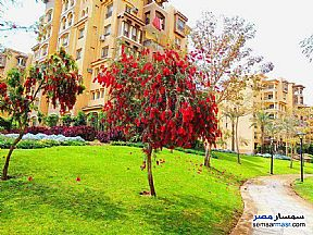 Ad Photo: Apartment 3 bedrooms 3 baths 211 sqm lux in Madinaty  Cairo
