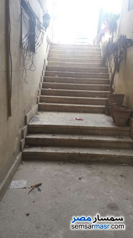 Photo 6 - Apartment 3 bedrooms 1 bath 300 sqm lux For Sale Nasr City Cairo