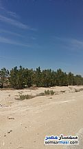 Ad Photo: Land 5 acre in Mukhabarat Land  6th of October