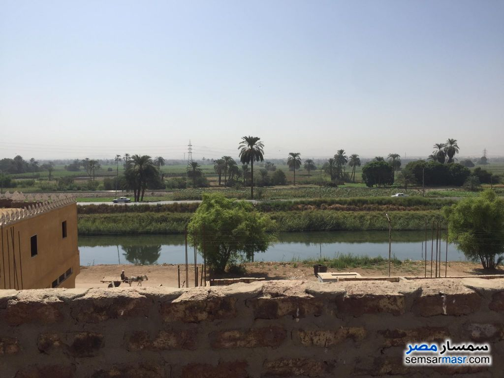 Ad Photo: Building 80 sqm super lux in Bayadiyah  Luxor