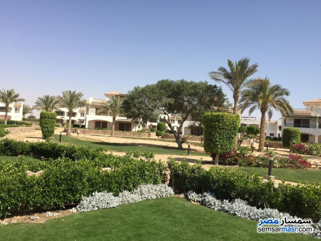 Photo 2 - Villa 6 bedrooms 2 baths 175 sqm lux For Sale Ras Sidr North Sinai