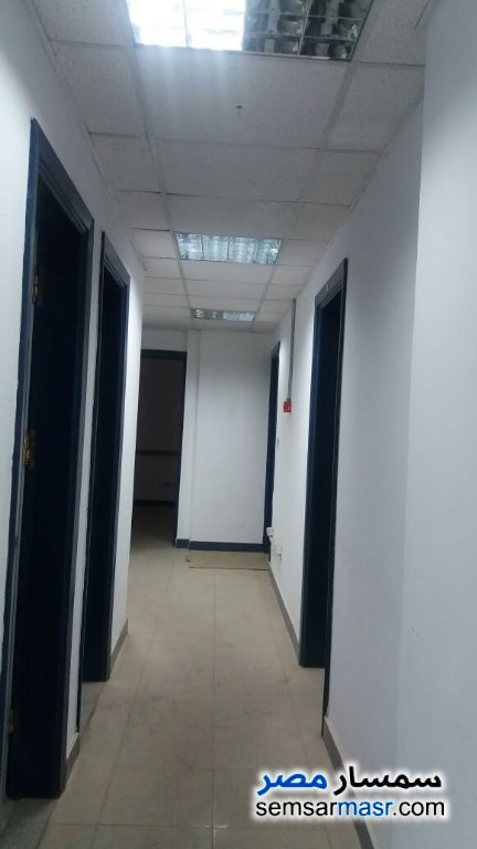 Photo 3 - Commercial 380 sqm For Rent Maadi Cairo
