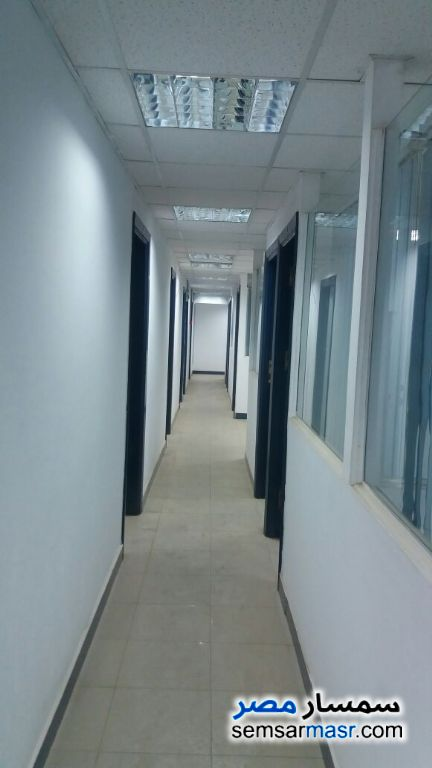 Photo 4 - Commercial 380 sqm For Rent Maadi Cairo