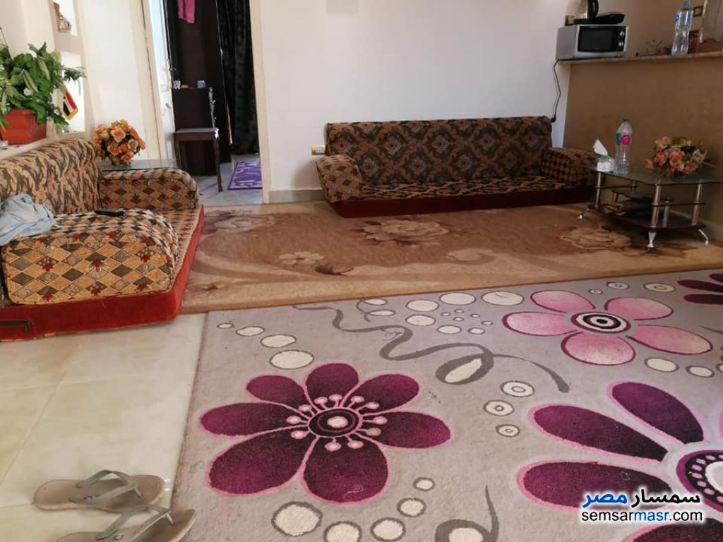Photo 8 - Apartment 1 bedroom 1 bath 60 sqm super lux For Rent New Nozha Cairo