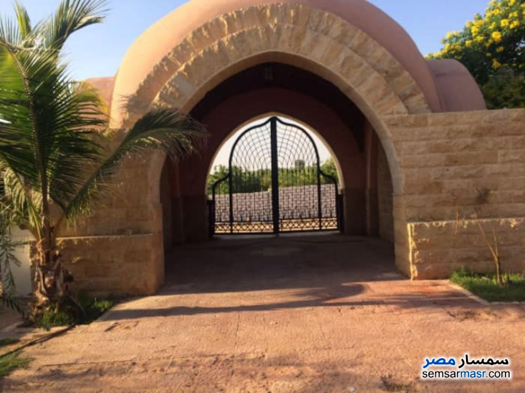 Photo 3 - Farm 6 acre For Sale Cairo Alexandria Desert Road Giza