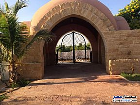 Farm 6 acre For Sale Cairo Alexandria Desert Road Giza - 3