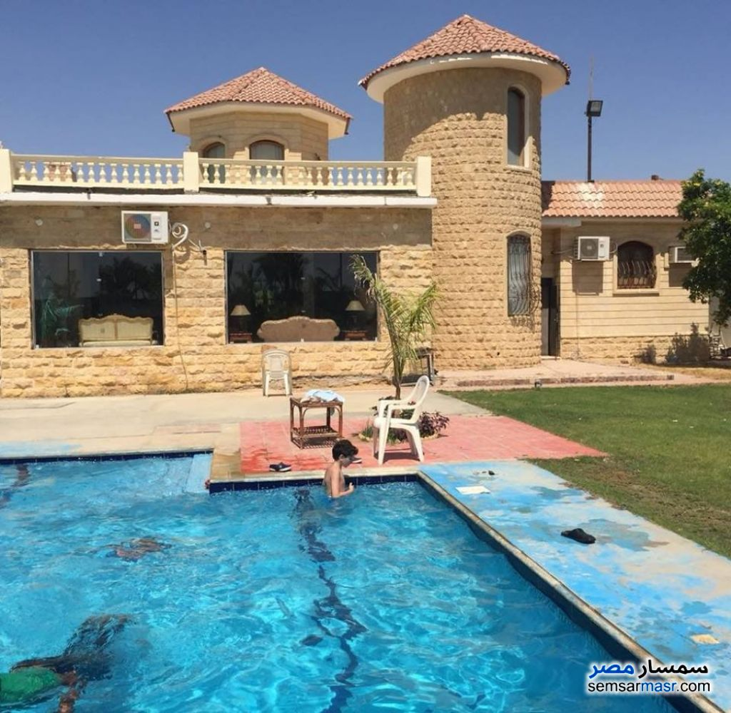 Photo 9 - Farm 6 acre For Sale Cairo Alexandria Desert Road Giza