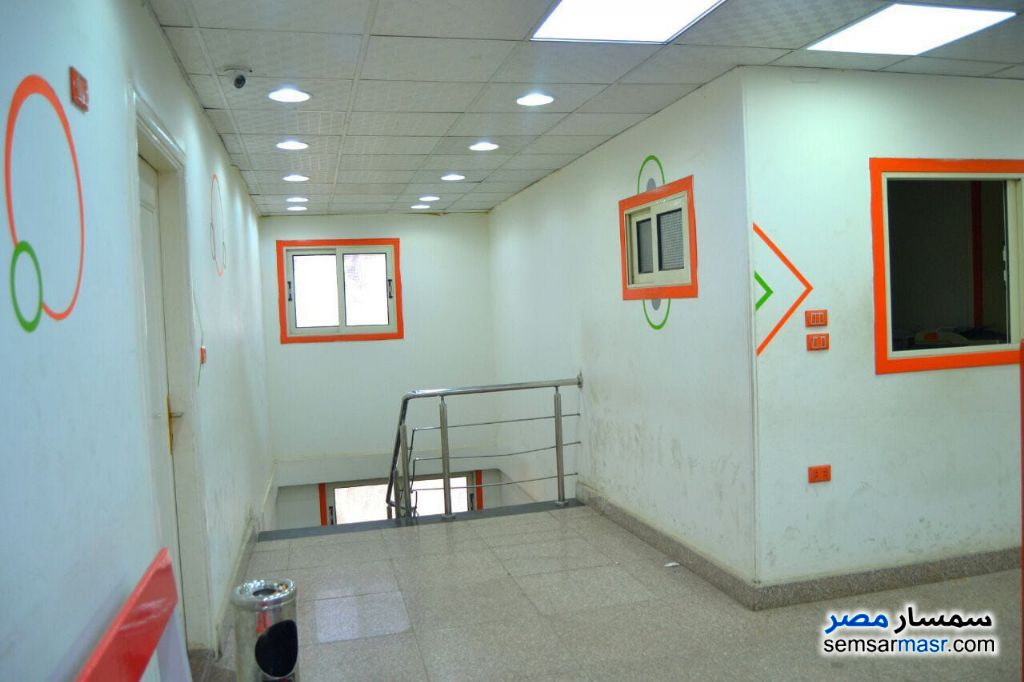 Photo 4 - Commercial 750 sqm For Sale Dokki Giza