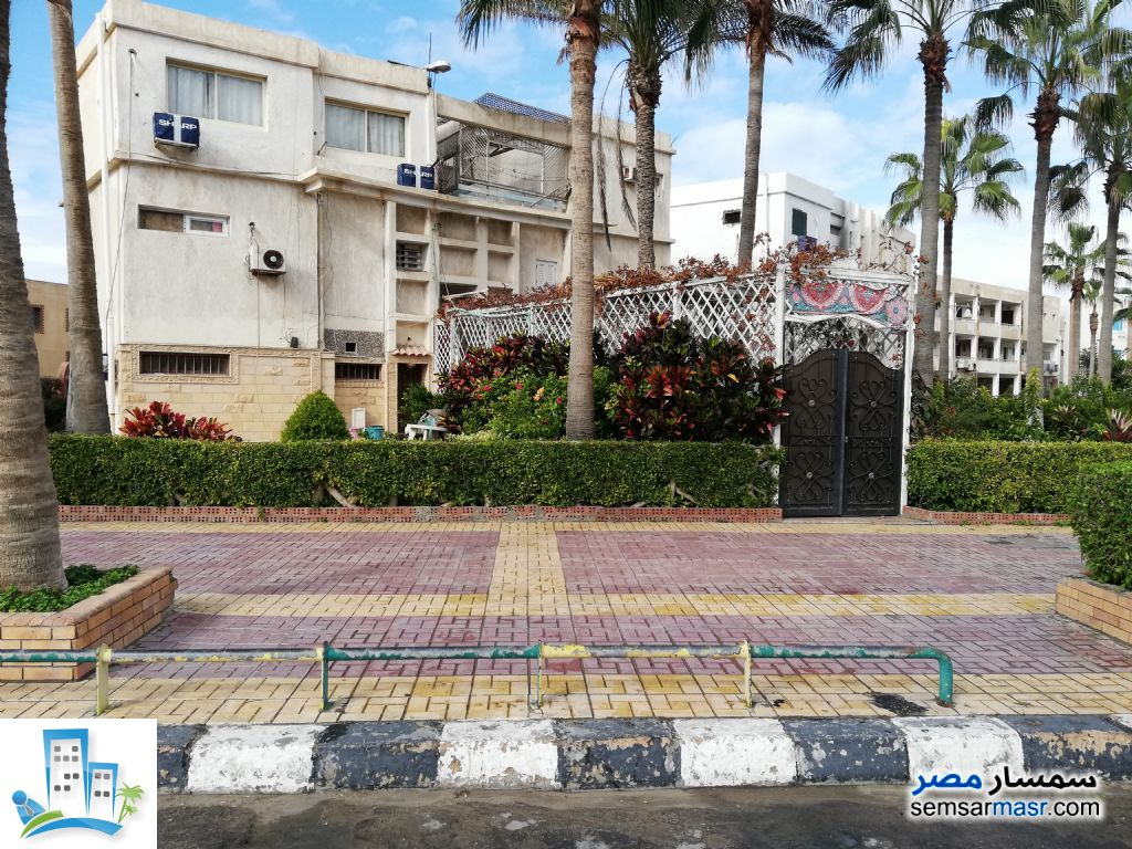 Ad Photo: Apartment 3 bedrooms 2 baths 165 sqm in Egypt