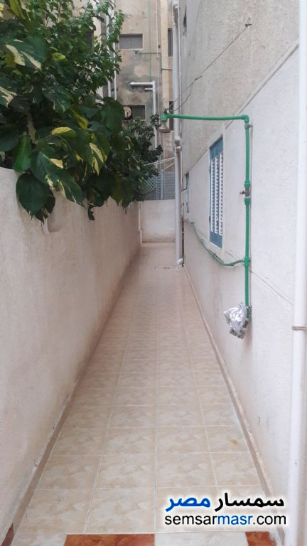 Photo 8 - Apartment 3 bedrooms 1 bath 120 sqm lux For Sale Nakheel Alexandira