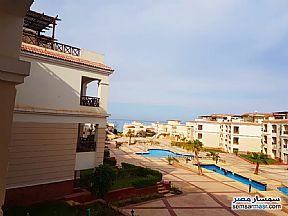 Ad Photo: Apartment 2 bedrooms 1 bath 80 sqm super lux in Dolphins Beach Resort  Ain Sukhna