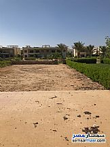 Ad Photo: Apartment 3 bedrooms 2 baths 355 sqm extra super lux in Ras Sidr  North Sinai