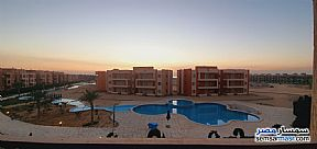 Ad Photo: Apartment 2 bedrooms 2 baths 70 sqm extra super lux in Ras Sidr  North Sinai