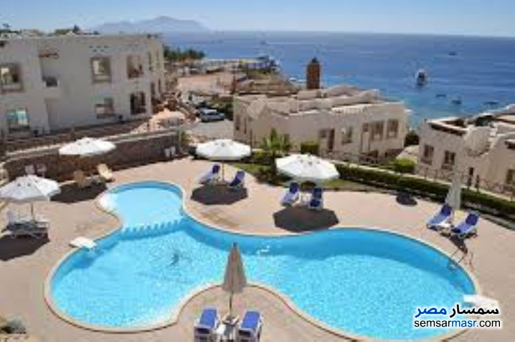 Photo 1 - Apartment 1 bedroom 1 bath 70 sqm extra super lux For Rent Sharm Al Sheikh North Sinai
