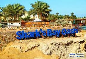 Apartment 1 bedroom 1 bath 70 sqm extra super lux For Rent Sharm Al Sheikh North Sinai - 4