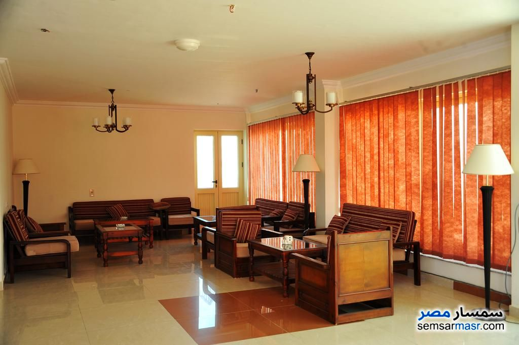 Photo 5 - Apartment 1 bedroom 1 bath 70 sqm extra super lux For Rent Sharm Al Sheikh North Sinai