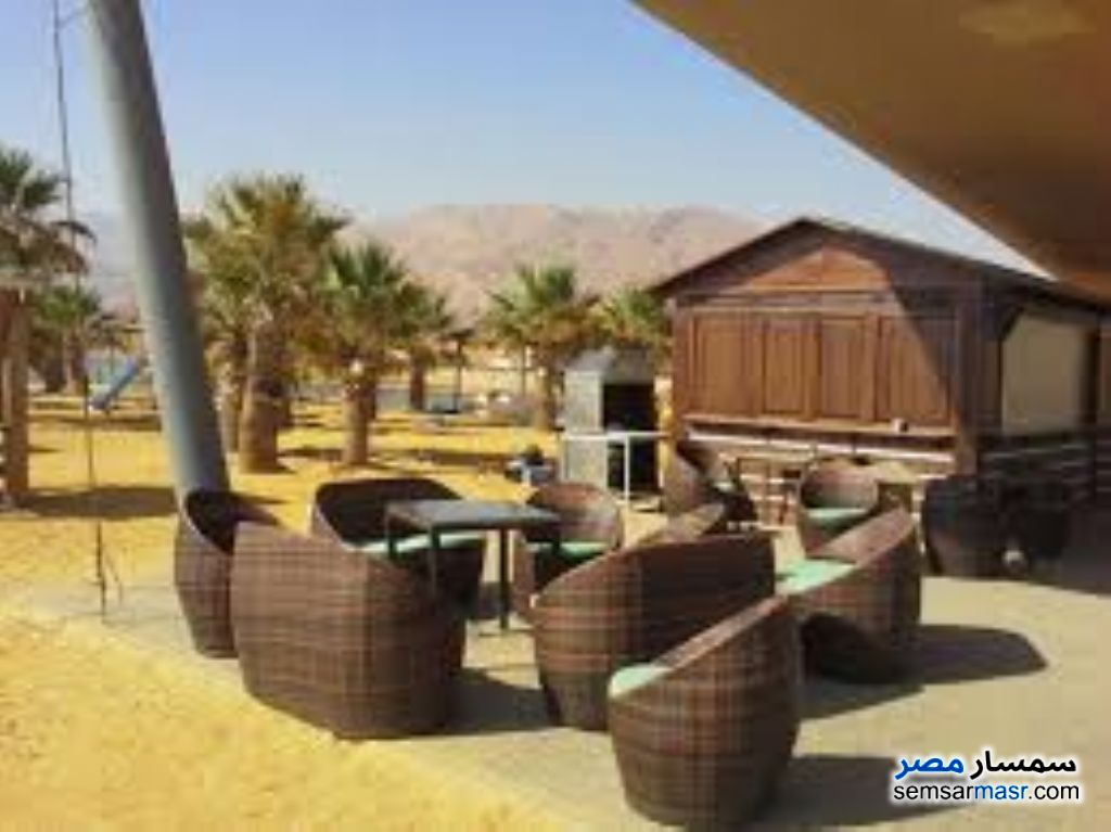 Photo 1 - Apartment 2 bedrooms 1 bath 100 sqm For Sale Porto Sokhna Ain Sukhna