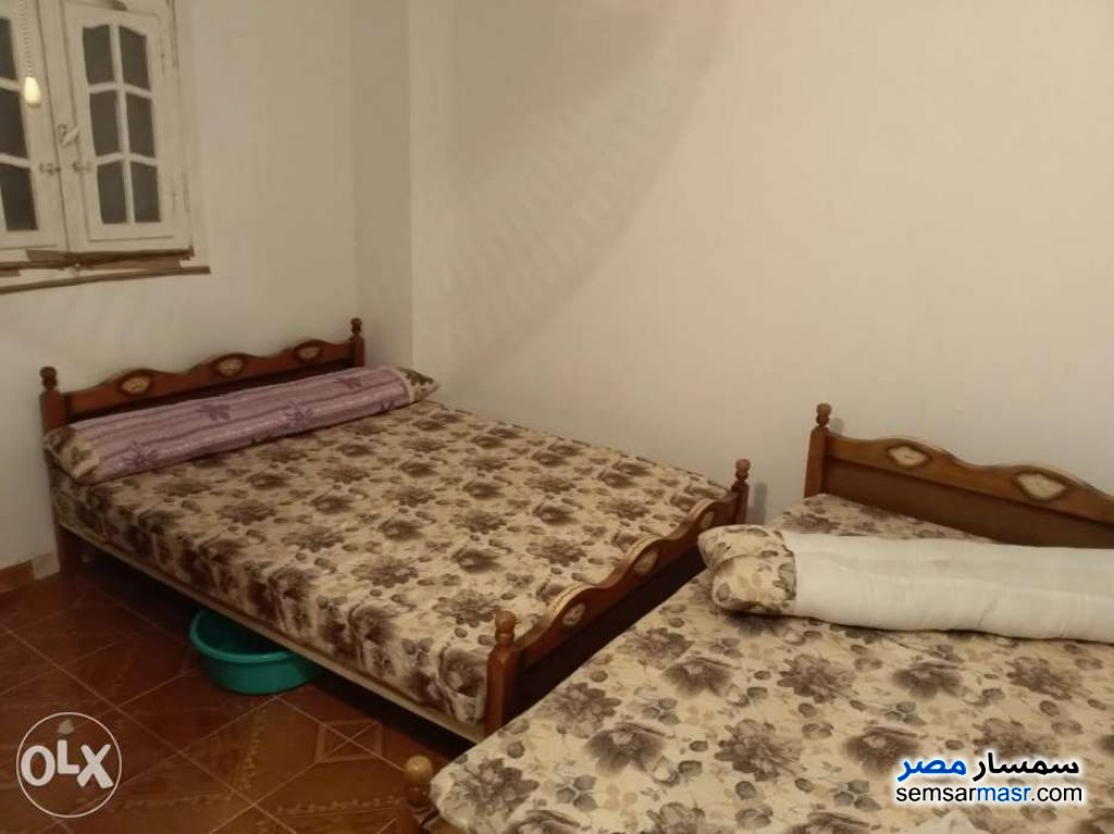 Photo 4 - Apartment 2 bedrooms 1 bath 70 sqm lux For Sale Agami Alexandira