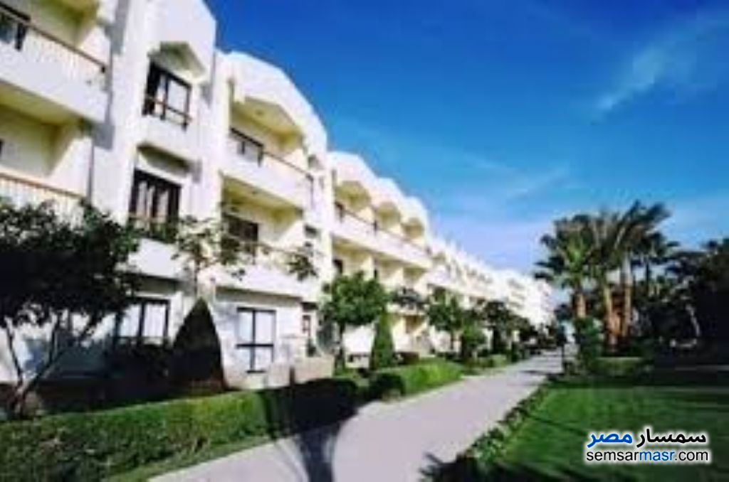 Photo 1 - Apartment 1 bedroom 1 bath 60 sqm extra super lux For Rent Hurghada Red Sea