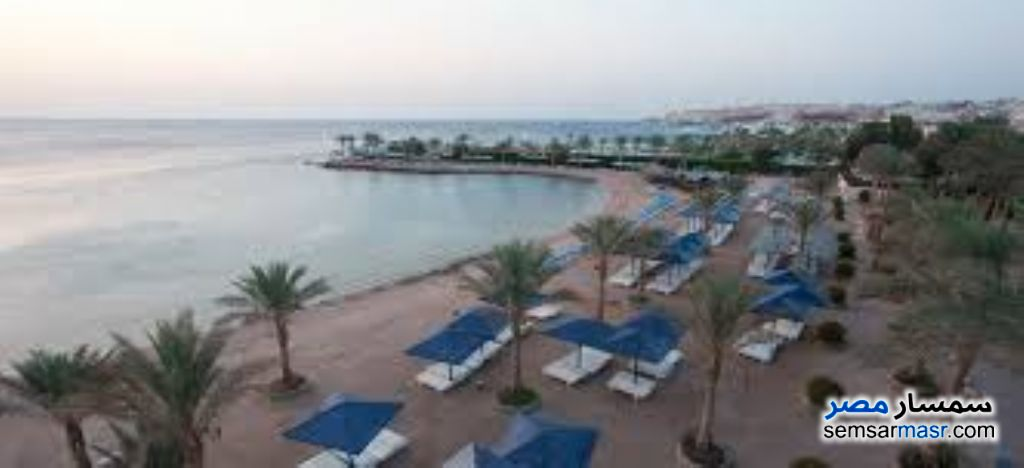Photo 9 - Apartment 1 bedroom 1 bath 60 sqm extra super lux For Rent Hurghada Red Sea
