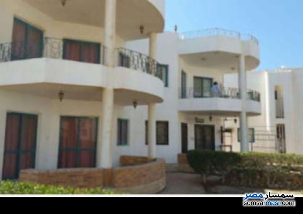 Photo 2 - Apartment 2 bedrooms 1 bath 150 sqm extra super lux For Rent Ras Sidr North Sinai