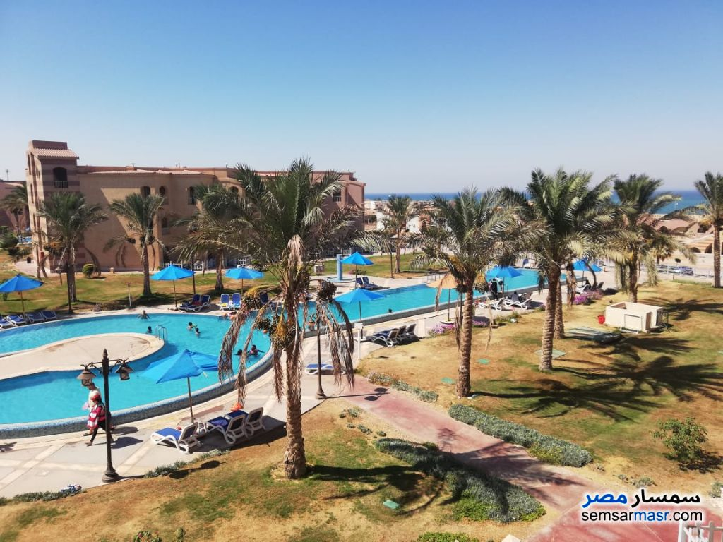 Photo 2 - Apartment 1 bedroom 1 bath 50 sqm super lux For Rent Porto South Beach Ain Sukhna