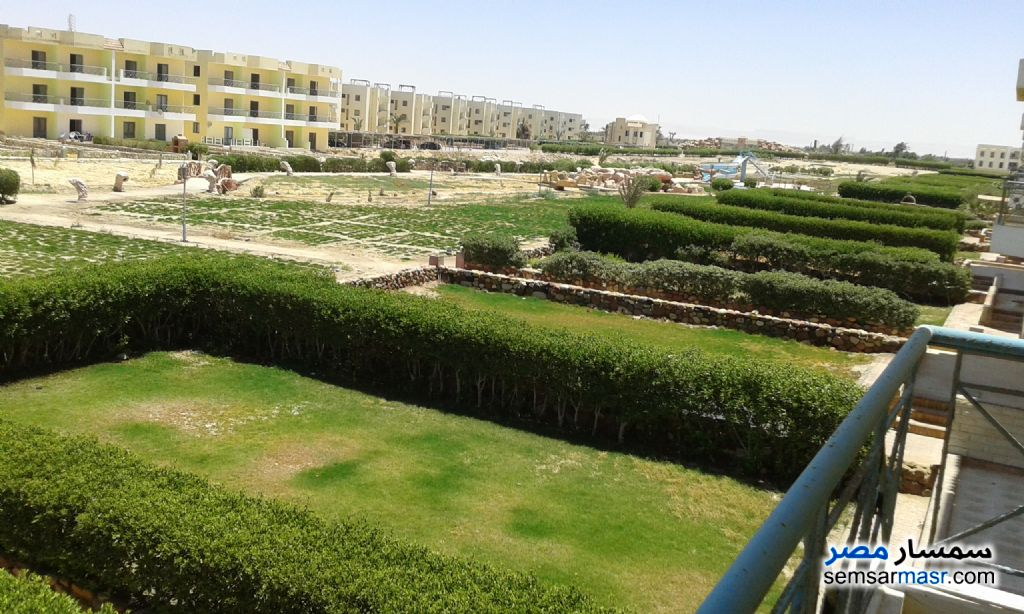 Photo 5 - Apartment 2 bedrooms 2 baths 140 sqm super lux For Rent Ras Sidr North Sinai