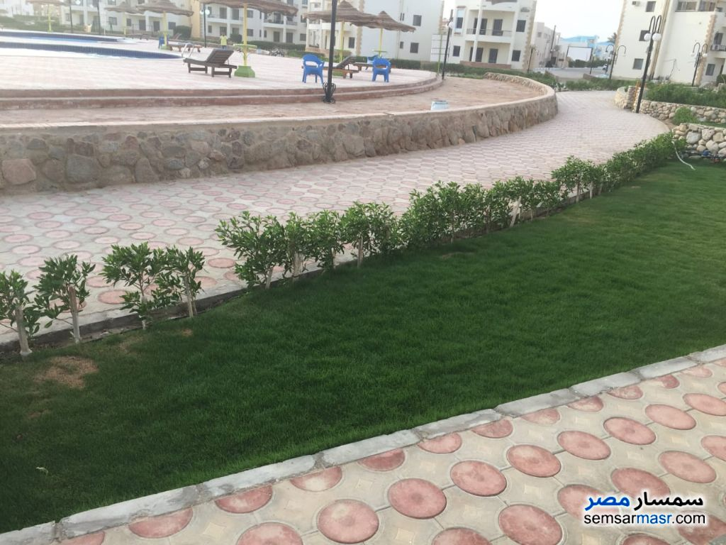 Photo 3 - Apartment 2 bedrooms 2 baths 90 sqm super lux For Rent Ras Sidr North Sinai