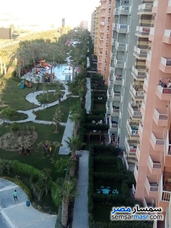 Ad Photo: Apartment 1 bedroom 1 bath 50 sqm extra super lux in Alexandira