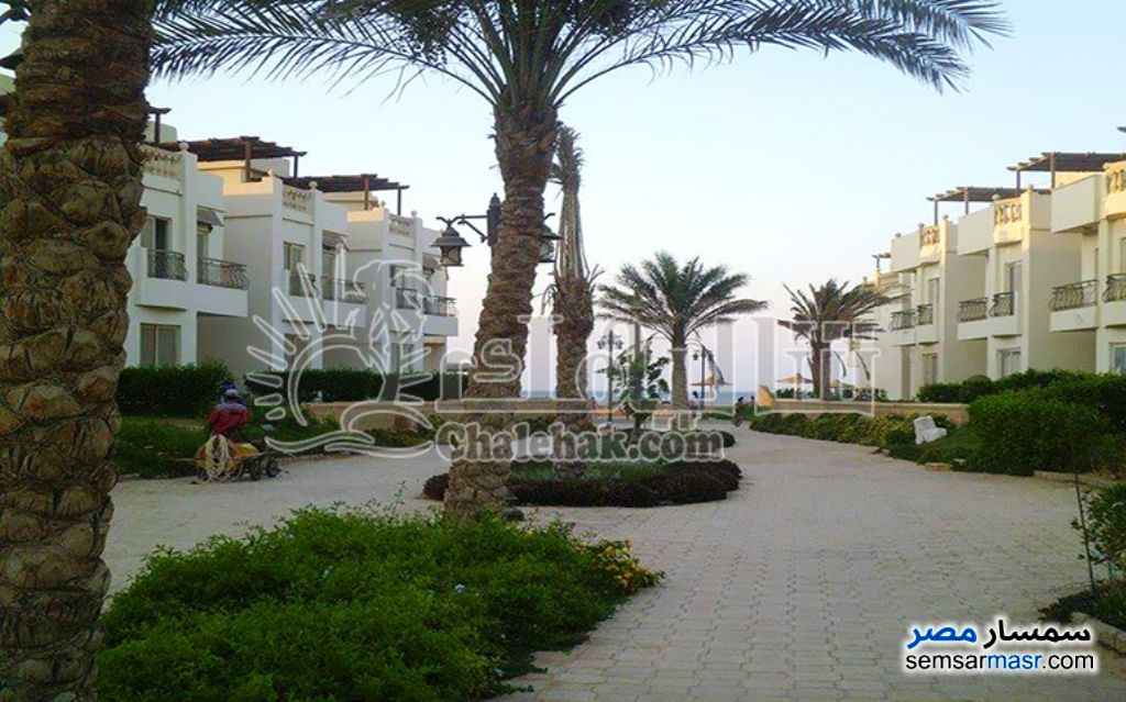 Photo 9 - Apartment 2 bedrooms 1 bath 70 sqm super lux For Sale Belagio Ain Sukhna