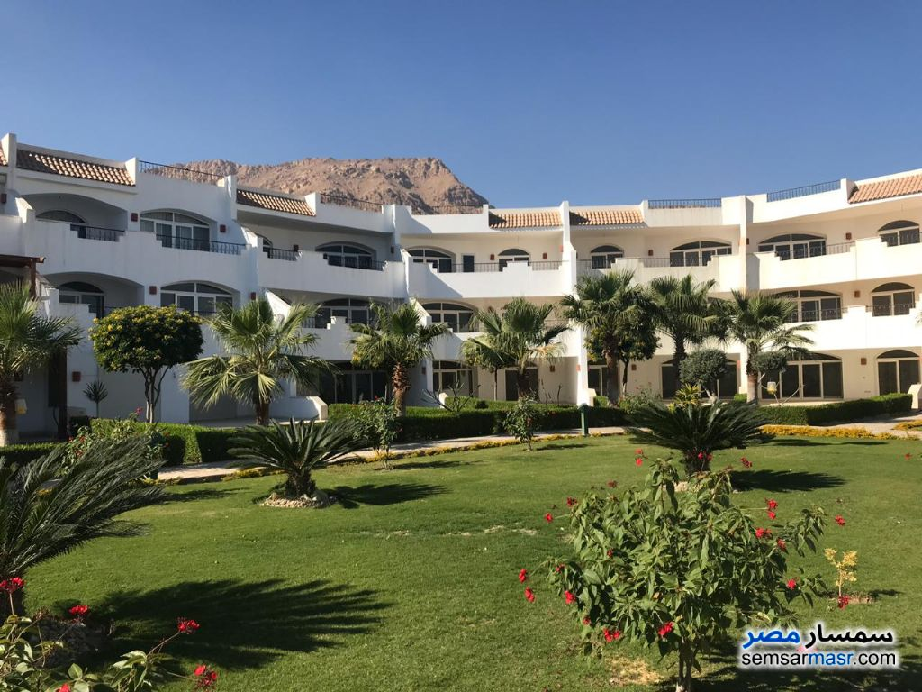 Photo 4 - Apartment 3 bedrooms 2 baths 207 sqm extra super lux For Sale Louly Beach Ain Sukhna
