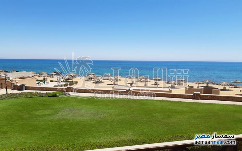 Photo 1 - Apartment 1 bedroom 1 bath 55 sqm super lux For Sale Stella Di Mare Sea View Ain Sukhna