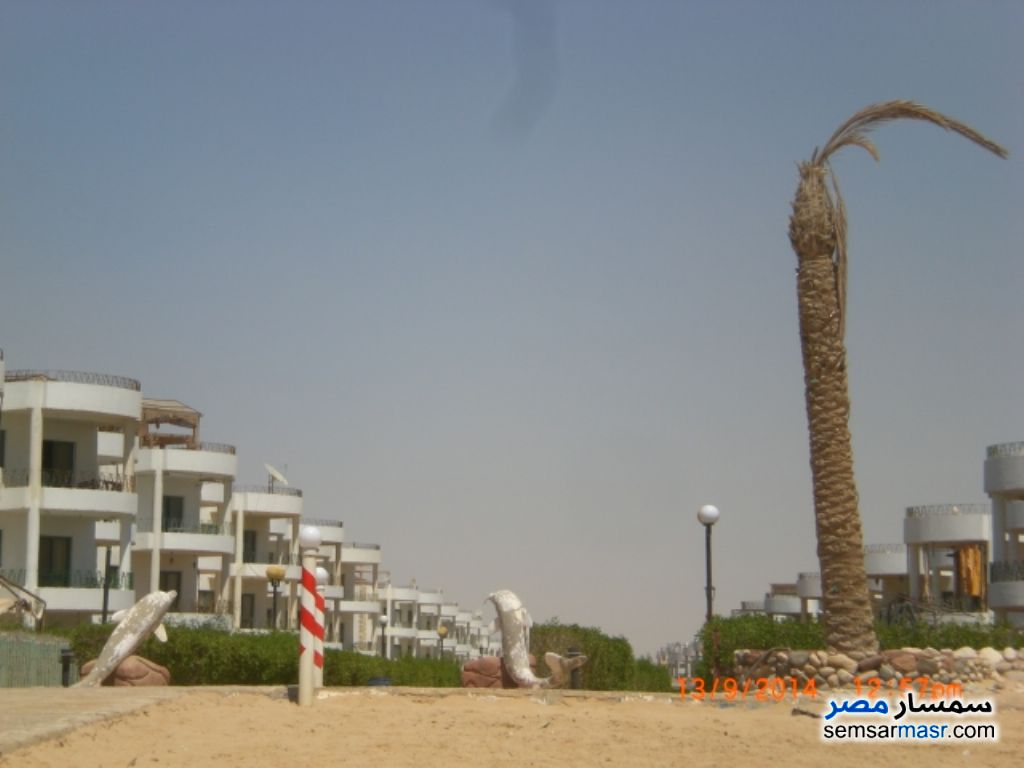 Photo 17 - Apartment 2 bedrooms 1 bath 115 sqm For Sale Ras Sidr North Sinai