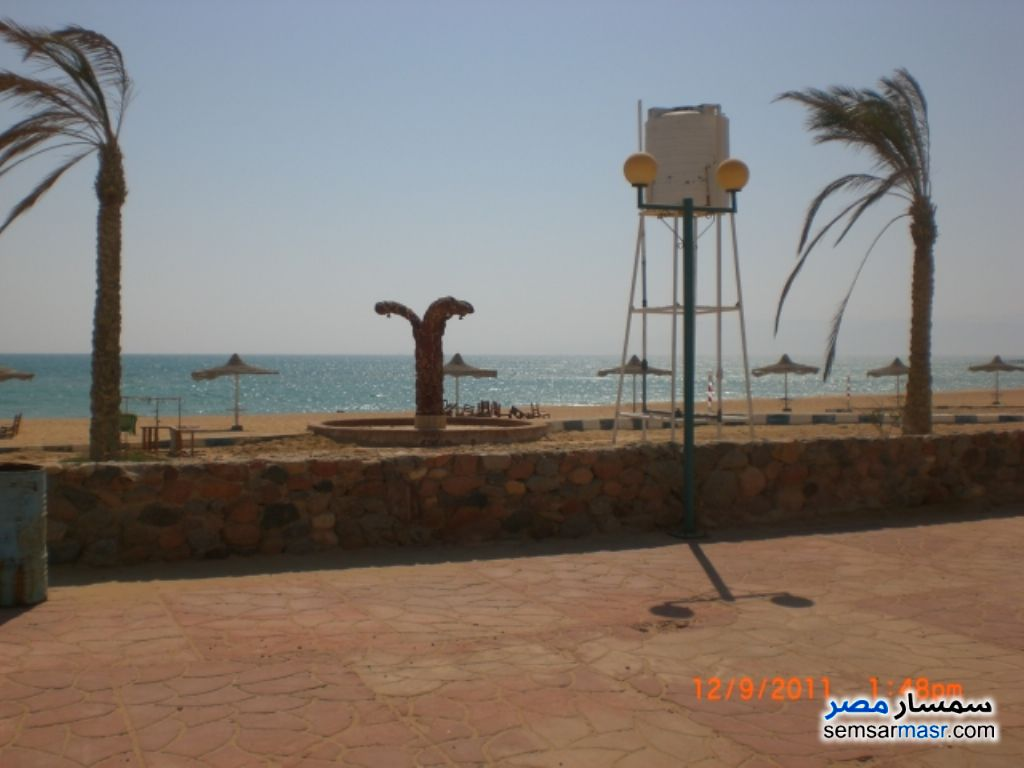 Photo 2 - Apartment 2 bedrooms 1 bath 115 sqm For Sale Ras Sidr North Sinai