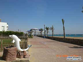 Apartment 2 bedrooms 1 bath 115 sqm For Sale Ras Sidr North Sinai - 4