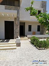 Ad Photo: Apartment 2 bedrooms 2 baths 125 sqm in Ras Sidr  North Sinai