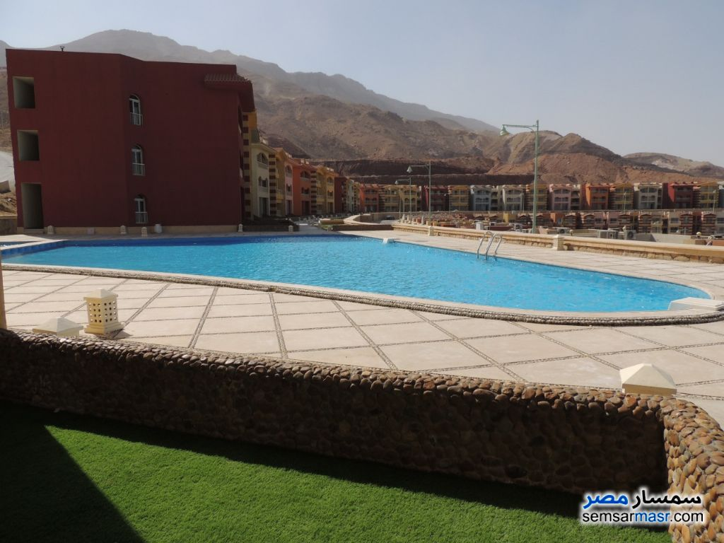 Photo 1 - Apartment 1 bedroom 1 bath 46 sqm super lux For Sale Porto Sokhna Ain Sukhna