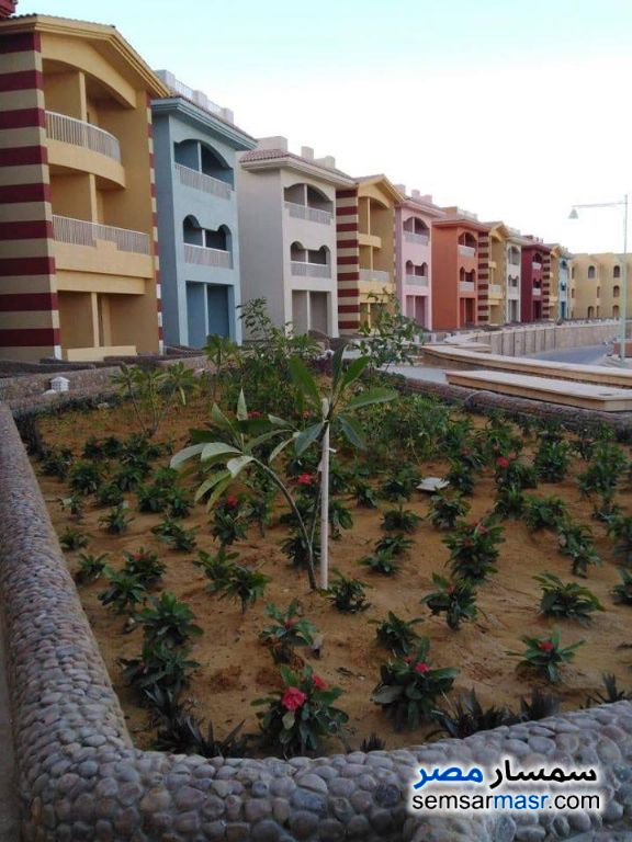 Photo 2 - Apartment 1 bedroom 1 bath 46 sqm super lux For Sale Porto Sokhna Ain Sukhna