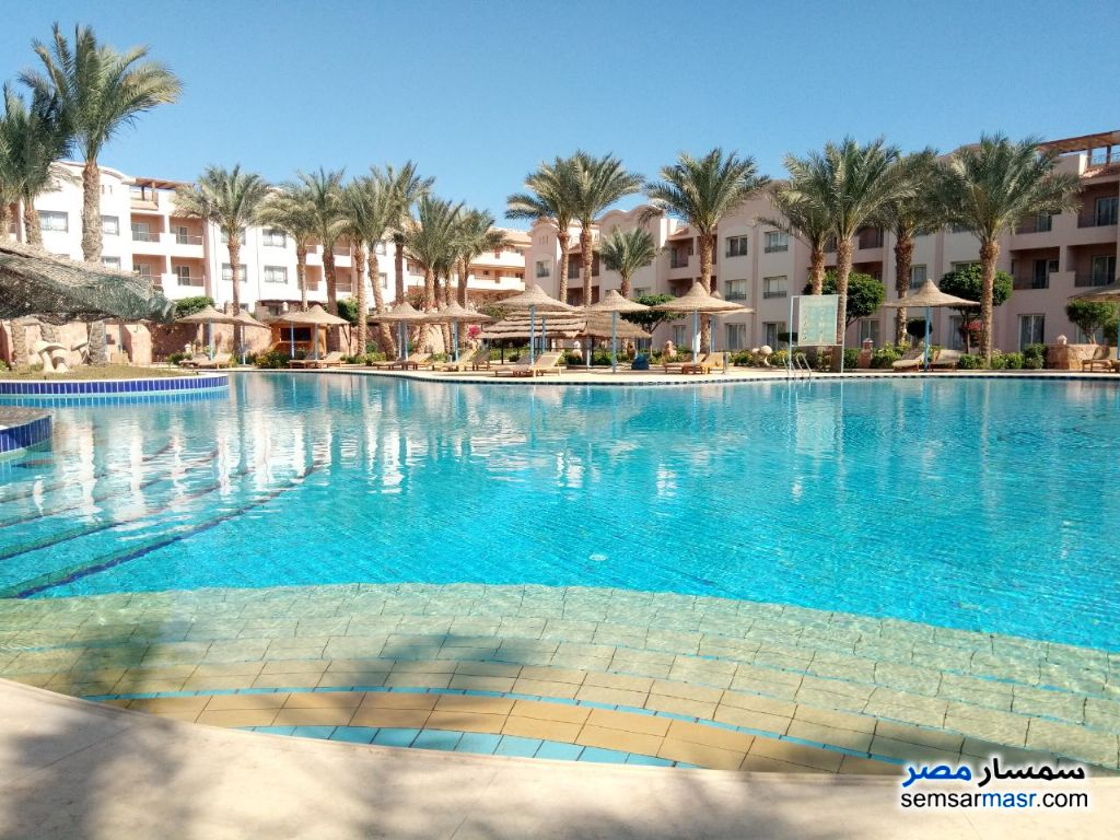 Photo 4 - Apartment 1 bedroom 1 bath 66 sqm super lux For Rent Hurghada Red Sea