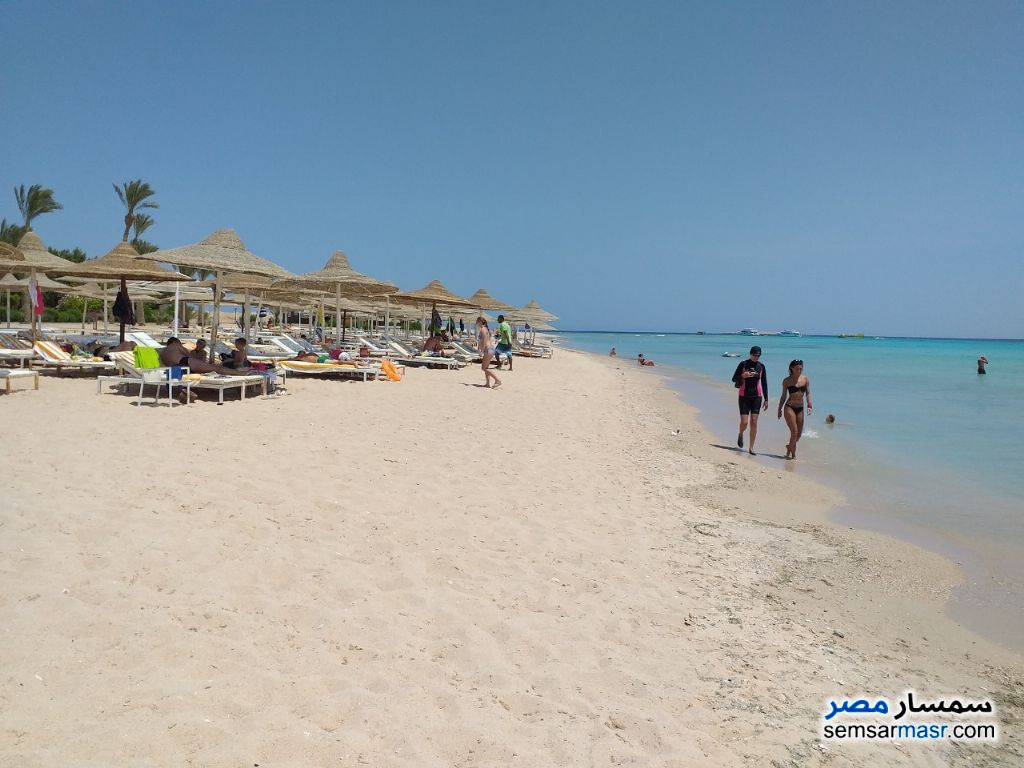 Photo 21 - Apartment 1 bedroom 1 bath 66 sqm super lux For Rent Hurghada Red Sea
