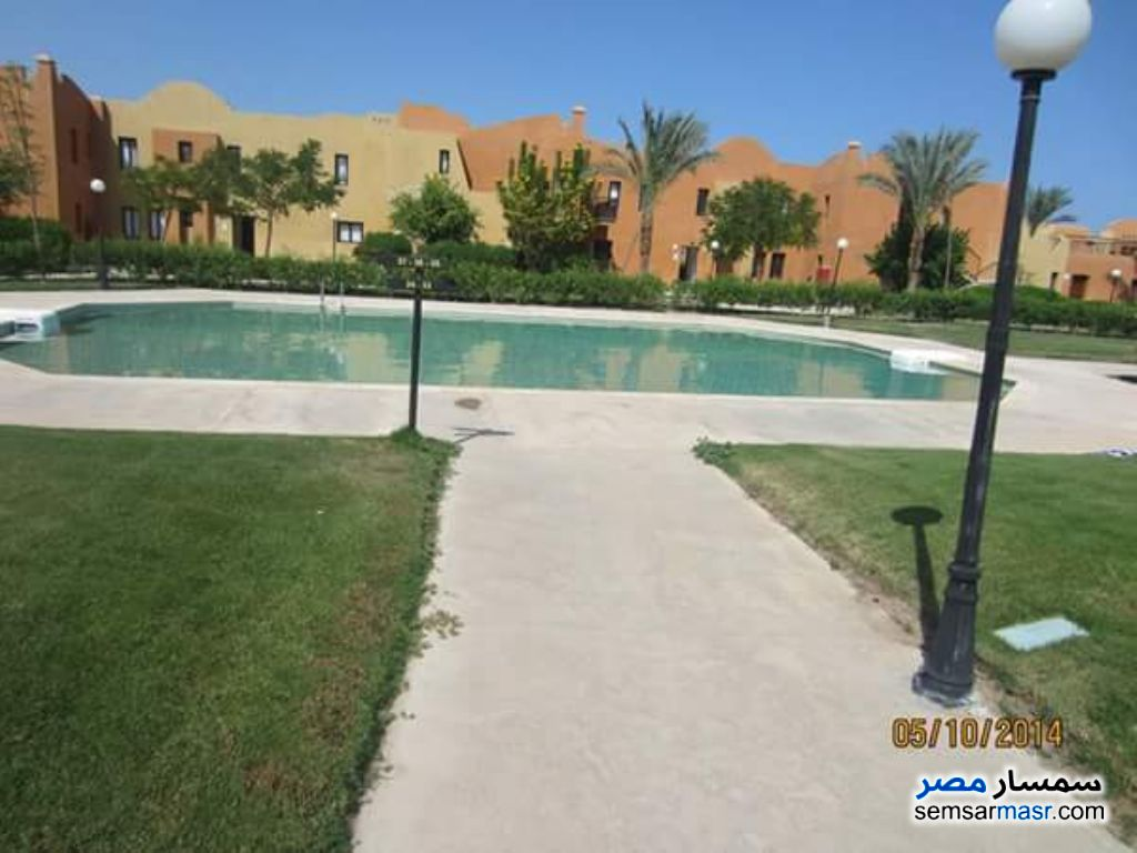 Photo 1 - Apartment 1 bedroom 1 bath 59 sqm super lux For Rent Hurghada Red Sea
