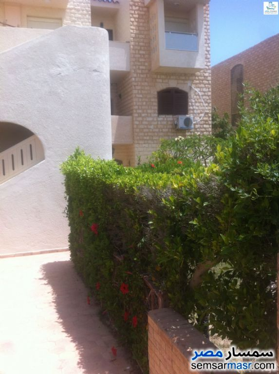 Photo 1 - Apartment 2 bedrooms 2 baths 130 sqm extra super lux For Rent Marina Matrouh