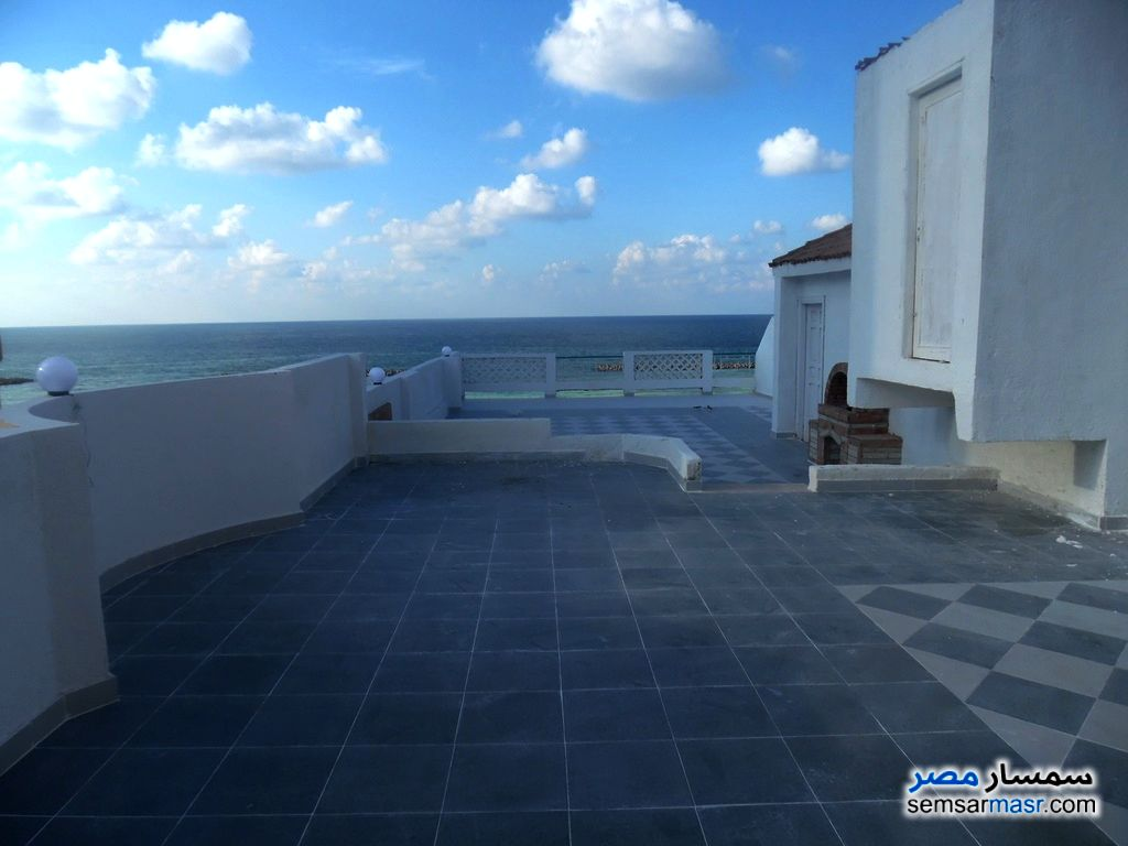 Photo 19 - Apartment 3 bedrooms 2 baths 240 sqm extra super lux For Sale Agami Alexandira