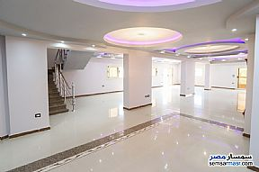 Ad Photo: Apartment 5 bedrooms 3 baths 650 sqm extra super lux in Roshdy  Alexandira